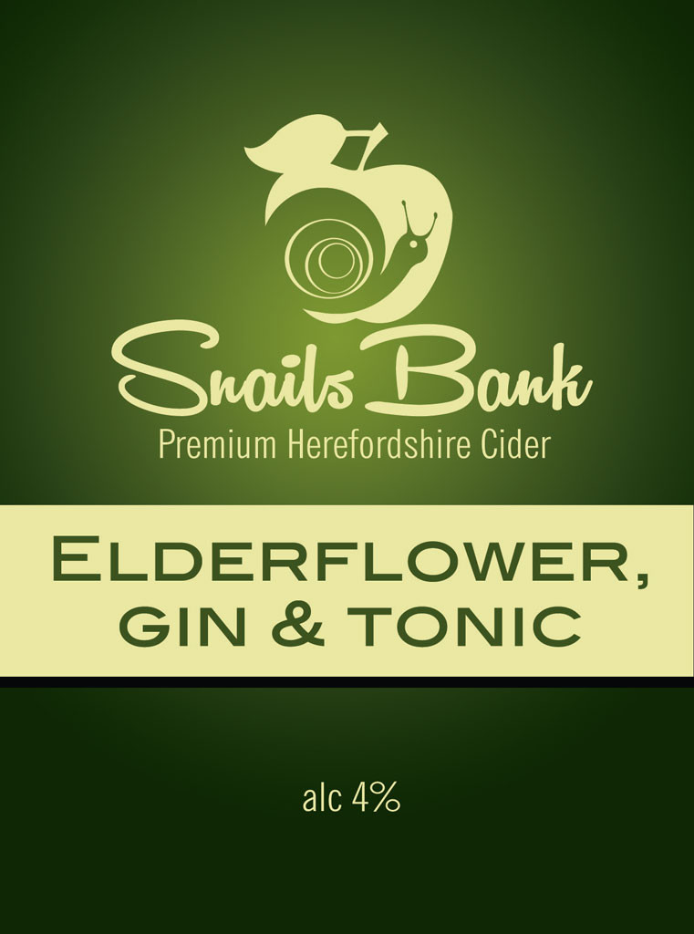Elderflower,-gin-&-tonic-01