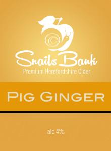 Pig-Ginger